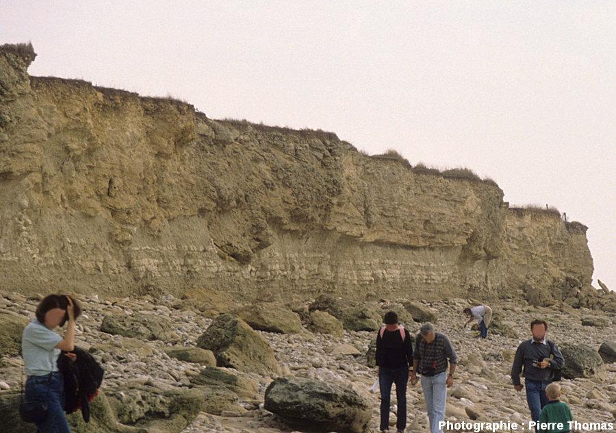 Les falaises de la Pointe du Chay, Angoulins, près de La Rochelle