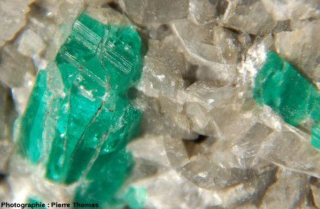 Gros plan sur un cristal d'émeraude dans une gangue de calcite
