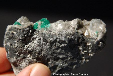Contact entre le filon de calcite et son encaissant d'argilites noires