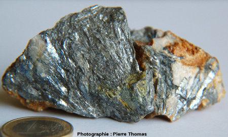 Échantillon de stibine, avec son éclat métallique caractéristique, provenant des anciennes mines du secteur de Massiac