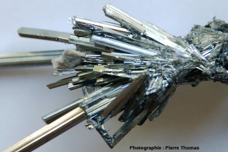 Échantillon de stibine avec ses cristaux aciculaires parfaitement automorphe
