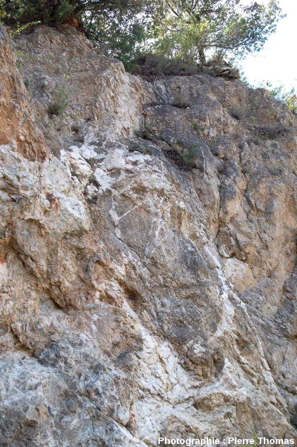 Vue rapprochée d'un ancien front de taille montrant la complexité du réseau filonien de barytine (BaSO4), secteur minier de Padern/Montgaillard