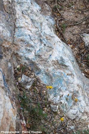 Gros plan sur un filon de barytine imprégné d'azurite, secteur minier de Padern/Montgaillard