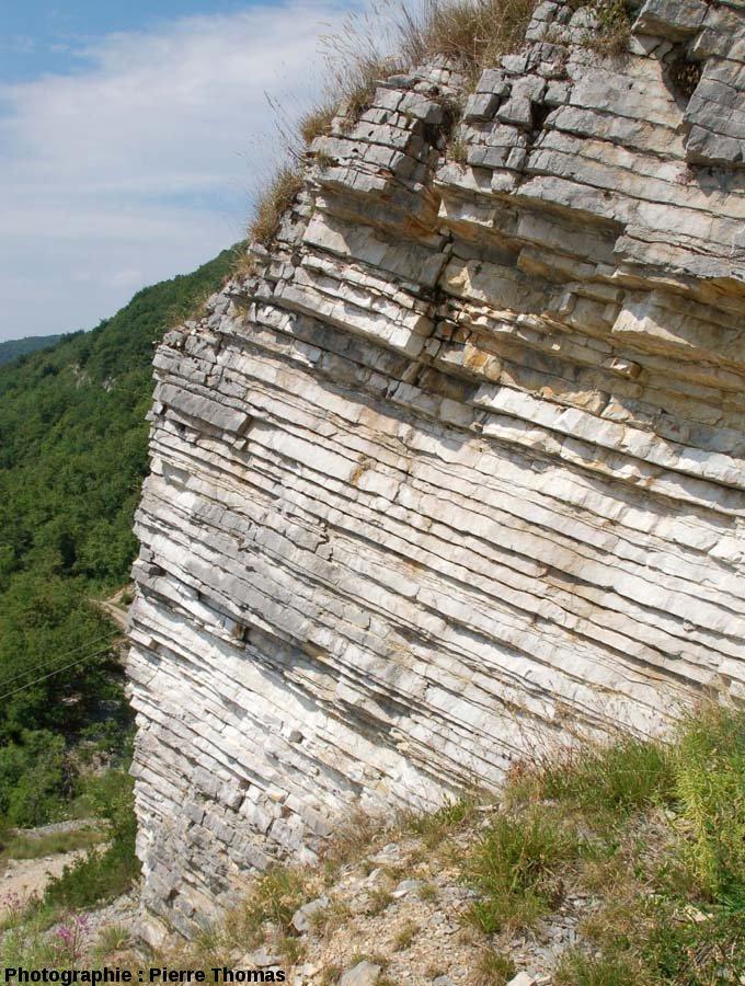 Détail de la stratification des calcaires sub-lithographiques de Cerin (Ain)