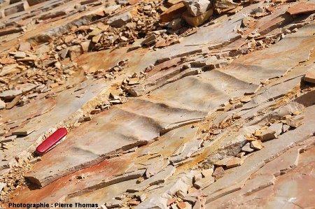 Détail de rides ou ondulations à la surface d'une dalle, carrière de Cerin (Ain)