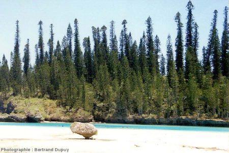 Une plage de l'Île des Pins, Nouvelle Calédonie