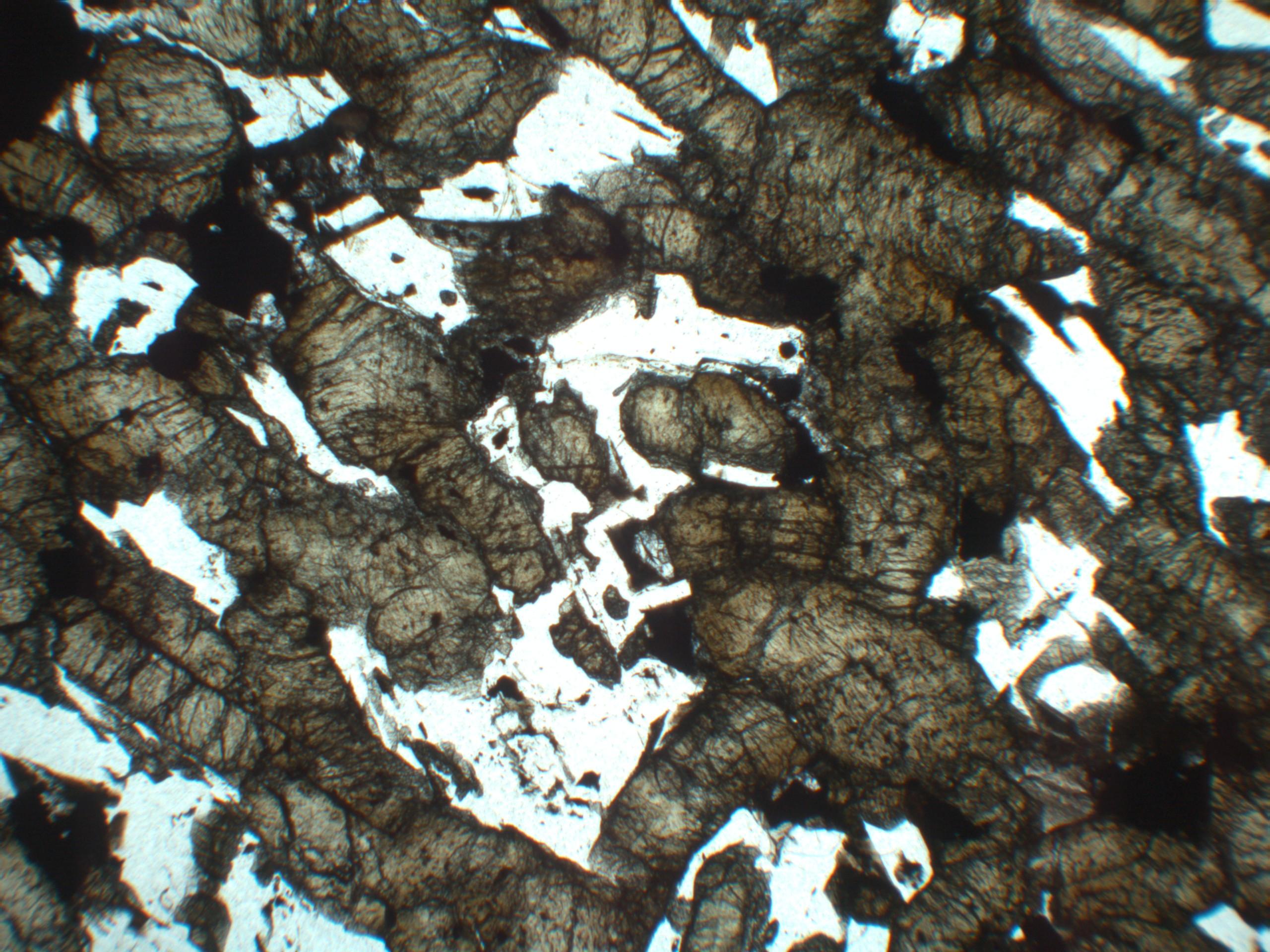 Shergotty, une météorite martienne: lame mince, lumière polarisée non analysée