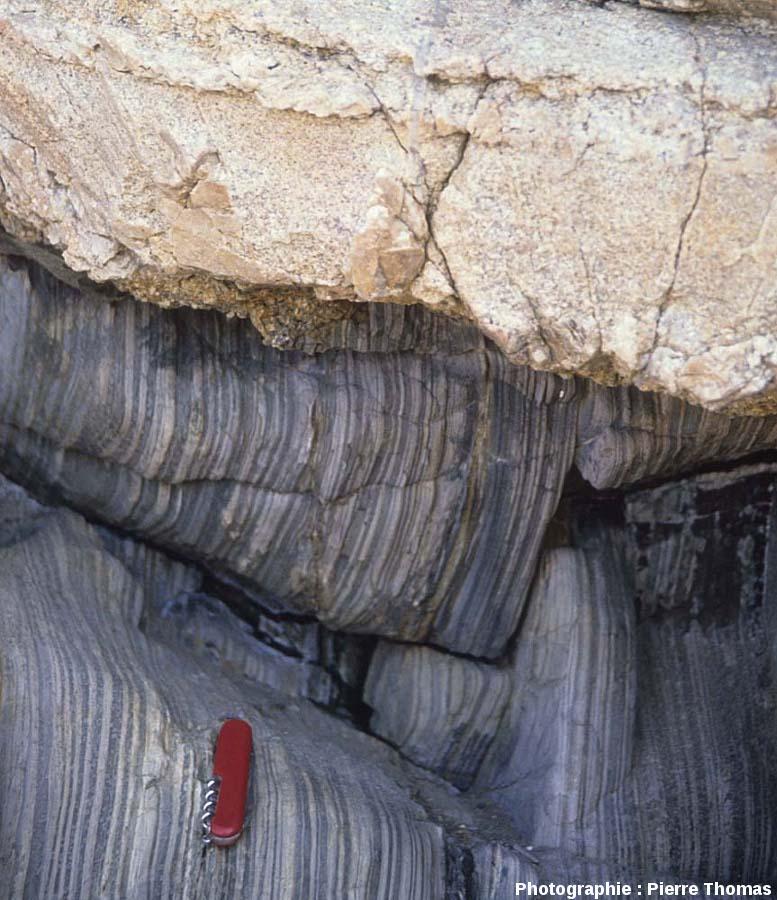Gros plan du contact granite / encaissant, granite de Ploumanac'h, île Milliau, Trébeurden (Côtes d'Armor)