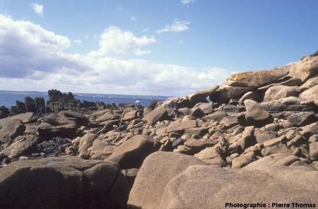 Allure «habituelle» du contact granite/encaissant sur l'île Milliau, en dehors des quelques dizaines de mètres où il est visible