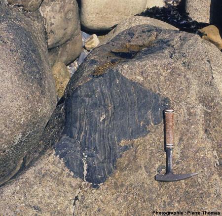 Vue de détail d'une enclave anguleuse «intacte», côté Sud de l'île Milliau, Trébeurden, Côtes d'Armor