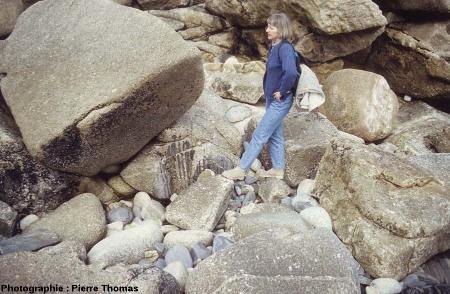Vue globale d'une enclave où la pénétration-dilacération par le magma est à un stade avancé, l'île Milliau, Trébeurden, Côtes d'Armor