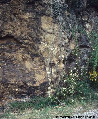 Vue locale du contact Nord du granite de l'Aigoual, le long de la D986, commune de Valleraugue (Gard)
