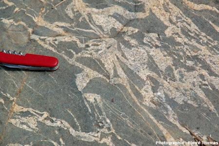 """Gros plan sur une """"brèche"""" au contact entre le granite de Theespruit et son encaissant amphibolitique, Elukwatini (Afrique du Sud)"""