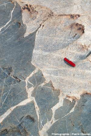 Le contact granite de Theespruit /amphibolite, là où la fragmentation est présente, mais limitée, Elukwatini (Afrique du Sud)