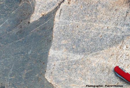 Le contact net granite de Theespruit /amphibolite, là où la fragmentation est présente, mais limitée, Elukwatini (Afrique du Sud)
