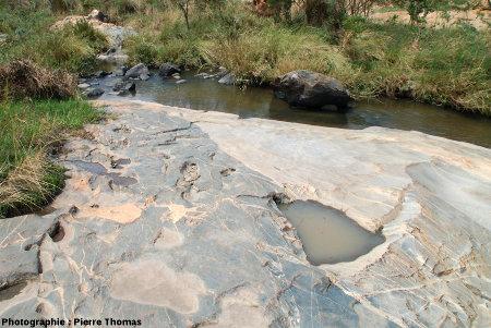 Autre secteur, contact granite de Theespruit / encaissant amphibolitique traversé de multiples filonnets mais sans bréchification importante, Elukwatini (Afrique du Sud)