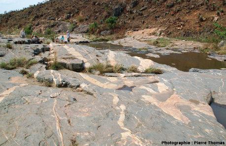 Dalles d'amphibolite traversées par des filons du granite de Theespruit, Elukwatini (Afrique du Sud)