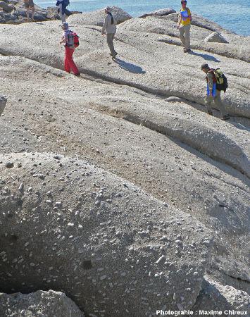 Spectaculaire affleurement de la granodiorite porphyroïde miocène du Monte Capanne au Capo San Andrea, île d'Elbe (Italie)