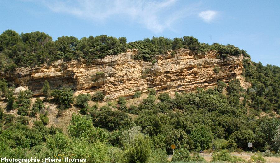 Vue générale de la falaise de Piolenc (Vaucluse)