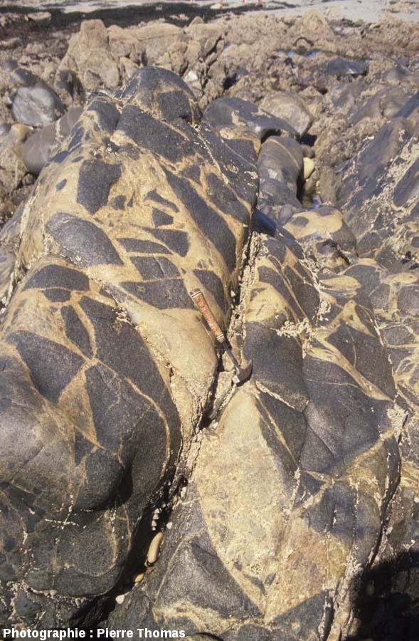 Brèche magmatique causée par l'intrusion de petites quantités de magma granitique au sein d'un gabbro déjà cristallisé, plage de Saint Jean du Doigt (Finistère)