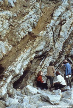 Filons de granite au sein des migmatites du Pouligen (Loire Atlantique)