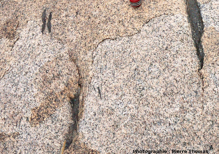 Enclaves surmicacées (restites) dans un granite, quelque part dans l'Altaï Mongol