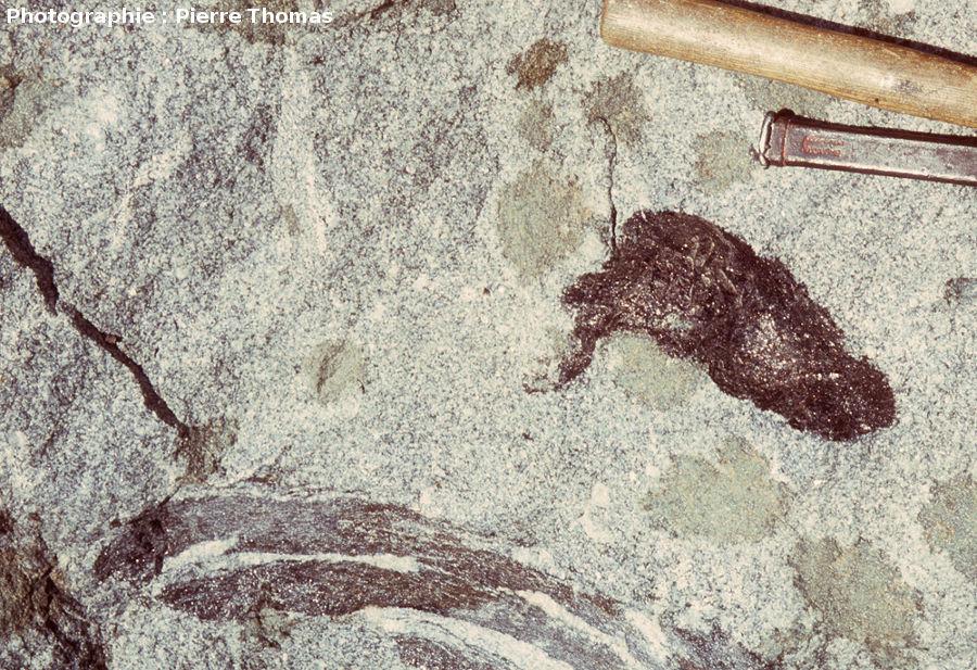 Enclaves surmicacées dans le granite du Velay, Burzet (Ardèche)