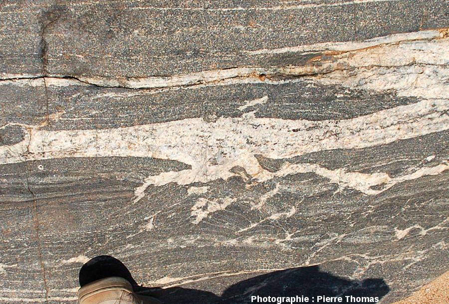 Gros plan sur une migmatite basique de la Sand River, Afrique du Sud