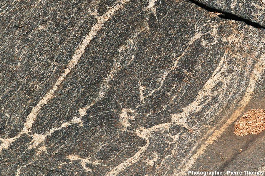 Dalle de migmatite basique dans le lit de la Sand River, Afrique du Sud