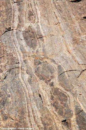 Vue de détail d'un affleurement de boudins basiques, migmatites de la Sand River, Afrique du Sud