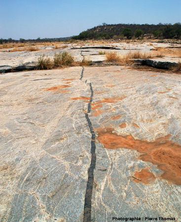Dyke de basalte recoupant les migmatites de la Sand River, Afrique du Sud