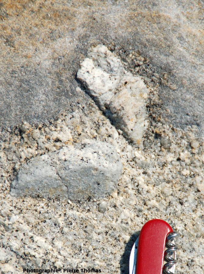 Vue de détail d'une enclave métrique, granite du Monte Capanne, Capo San Andrea, îled'Elbe, Italie