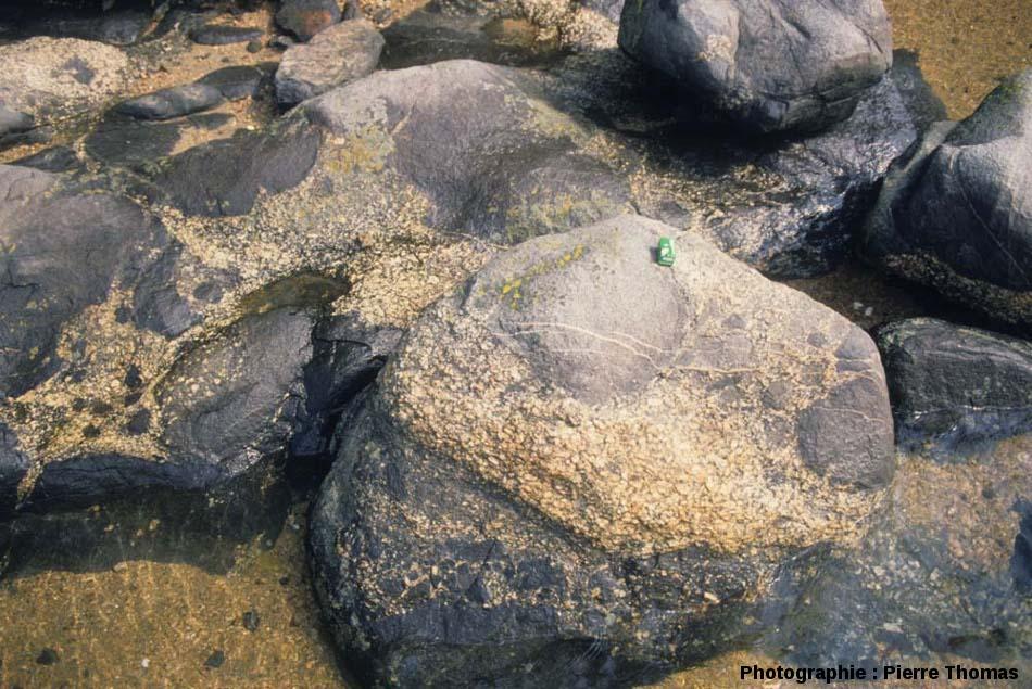 Autre site montrant de nombreuses enclaves de gabbro (de toutes tailles) dans le granite de Ploumanac'h, Baie de Sainte Anne, Trégastel (Côtes d'Armor)