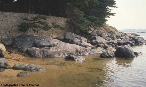Vue d'ensemble de l'affleurement de la baie de Sainte Anne, Trégastel (Côtes d'Armor)