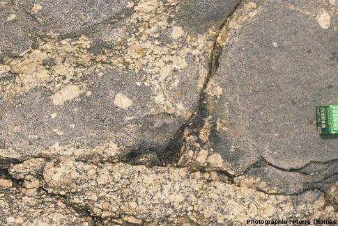 Une enclave de gabbro contenant des orthoses, baie de Sainte Anne, Trégastel (Côtes d'Armor)