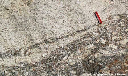 Figures de mélange entre deux magmas granitiques, l'un ayant donné un granite porphyroïde relativement sombre et l'autre un leucogranite très clair, les Albas, commune de Felluns (Pyrénées Orientales)