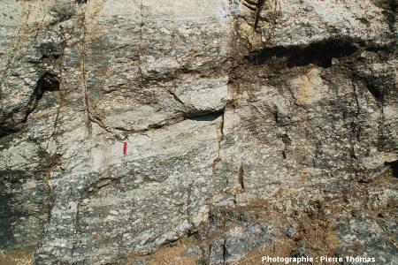 Détail montrant un mélange un peu plus poussé entre les 2 faciès de granite, les Albas, commune de Felluns (Pyrénées Orientales)