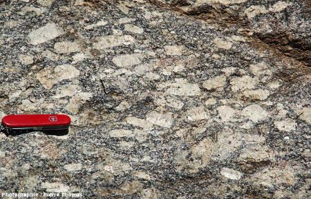 Secteur au bord de la D 619, les Albas (Pyrénées Orientales), montrant une très belle structure fluidale dans le faciès sombre porphyroïde
