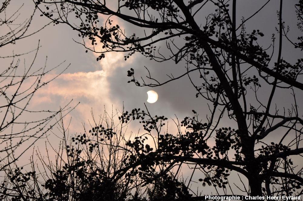 L'éclipse partielle de soleil du 4 janvier 2011 photographiée (sans filtre) à 10h05 (HLF) à travers les nuages depuis les jardins de l'ENS de Lyon