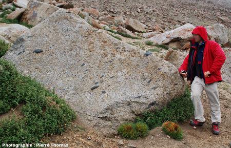 Structure fluidale marquée par l'orientation d'enclaves dans un granite trans-himalayen, route de Karoo à Tsangtse, Ladakh (Inde)