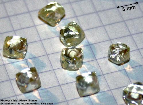 Lot de 8 diamants bruts naturels, gros plan