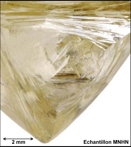 Détail du diamant brut 88-87, collection du MNHN