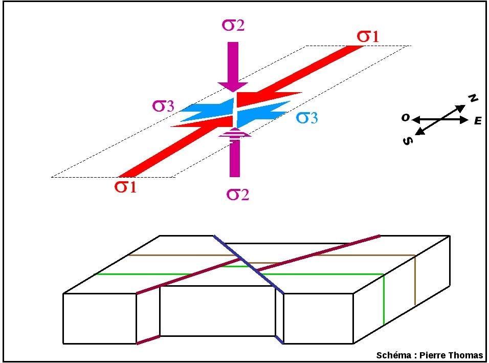 Représentation très simplifiée des structures tectoniques associées à un raccourcissement N-S et à une élongation E-O: décrochements conjugués dextres (en bleu) et sénestres (en rouge bordeaux)