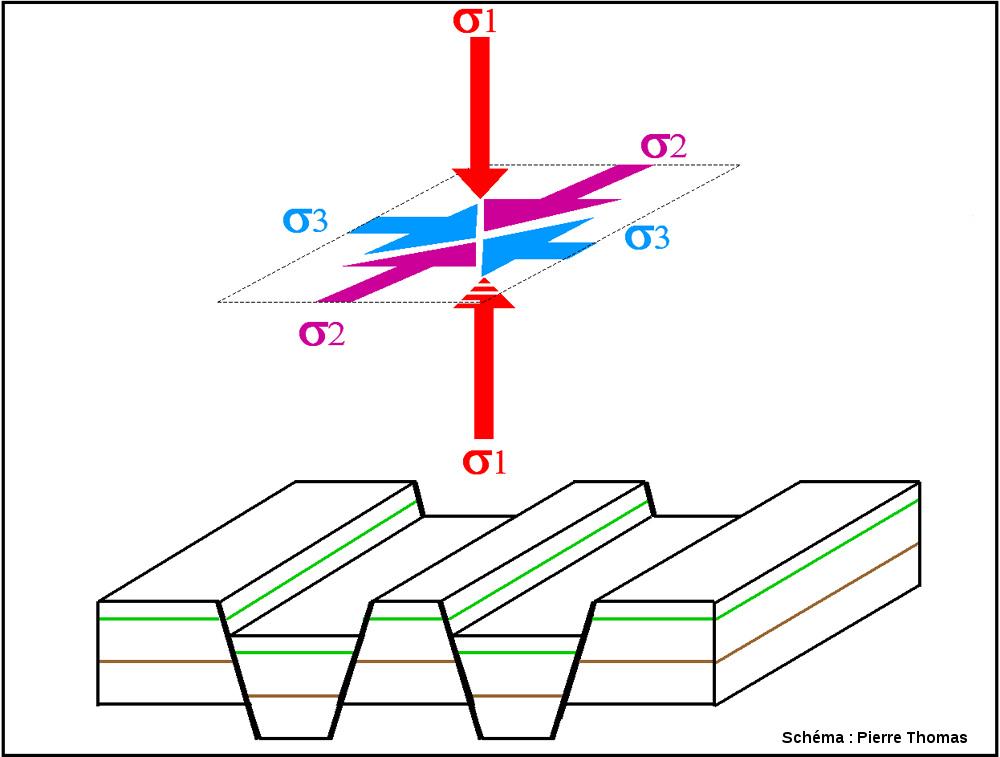 Schéma très simplifié d'un champ de contrainte engendrant des failles normales: la contrainte la plus forte (σ1) correspond à la contrainte verticale
