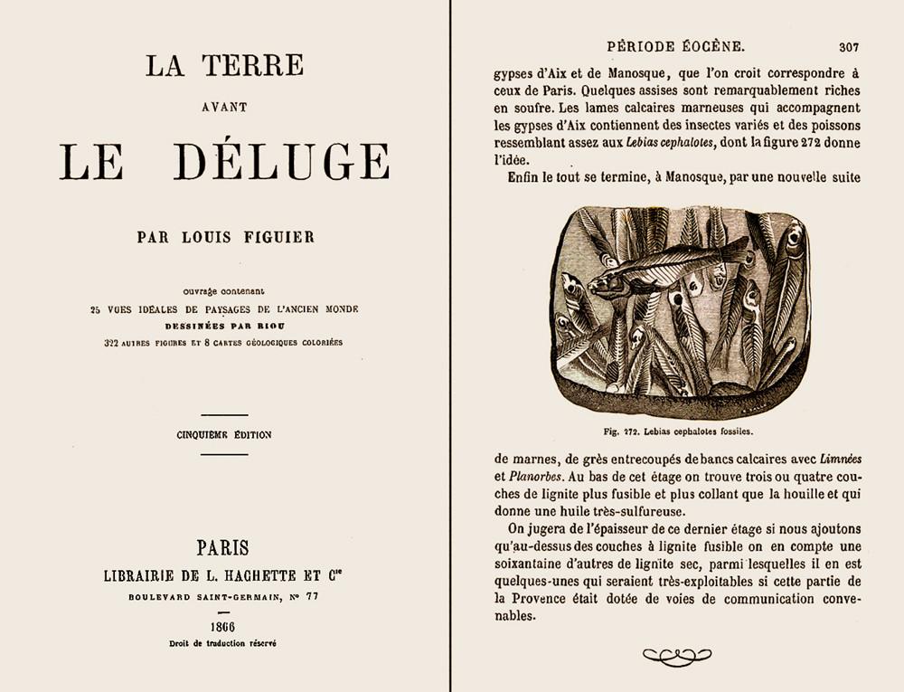 La terre avant le déluge, livre de Louis Figuier (1866), pages 1 et 307