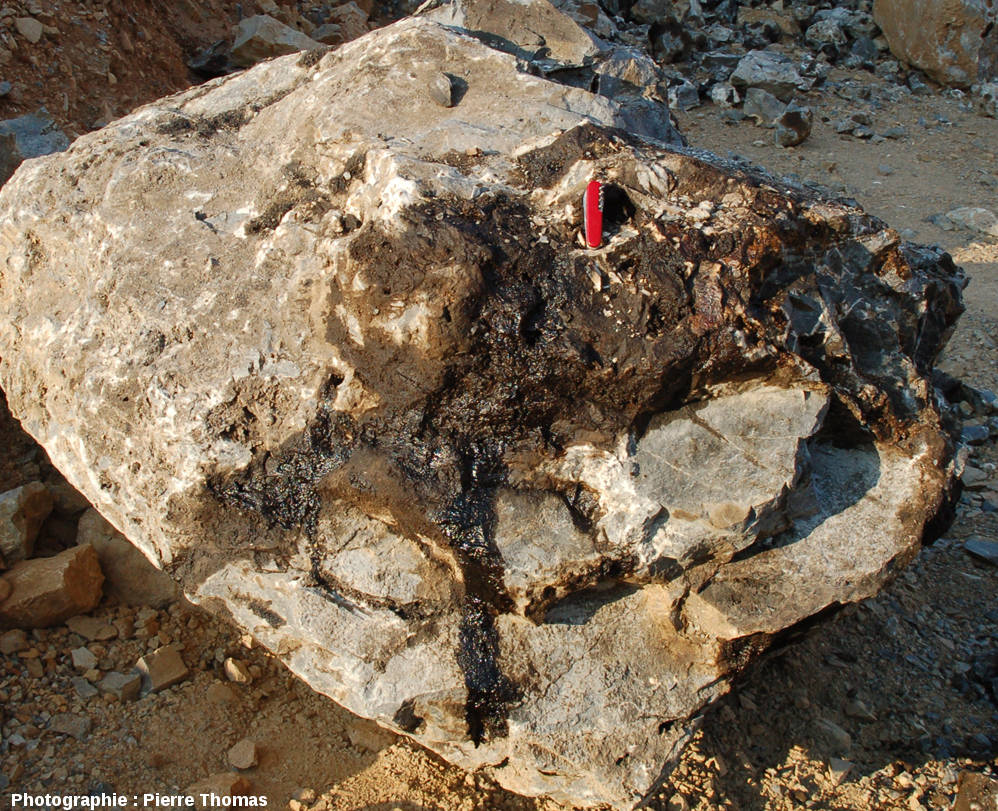 Bloc de dolomie avec du pétrole s'échappant des cavités et géodes ouvertes par l'exploitation de la carrière, Loiras, Hérault