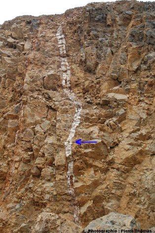 Vue globale du filon (barytine blanche) qui traverse tout le front de taille inférieur de la carrière de Loiras, Le Bosc, Hérault