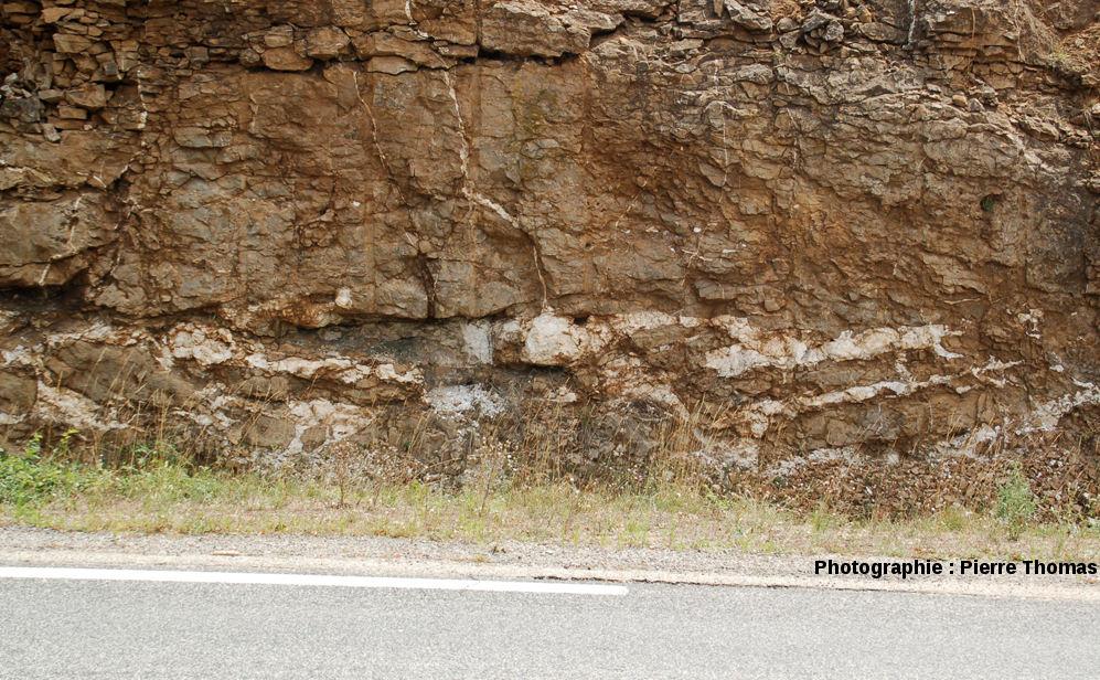 Gisement stratoïde de barytine au sein des calcaires dolomitiques de l'Hettangien (Jurassique basal), bord de l'ancienne Nationale 9 (maintenant D 809), Aveyron