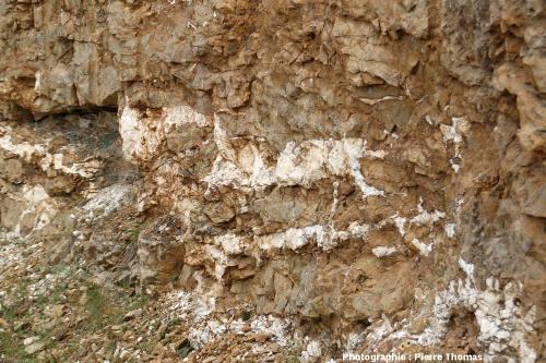 Détail de l'affleurement à barytine stratoïde, bord de l'ancienne Nationale 9 (maintenant D 809), région de Millau, Aveyron