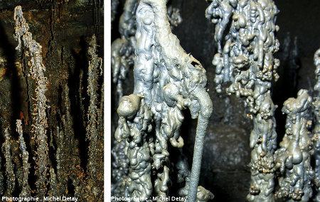 Tunnel de lave de Jörundur (Islande), détails de stalagmites